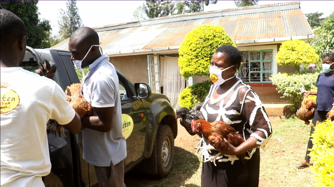 Kisumu County article on how Chicken Basket LTD is Improving Livelihoods through Poultry Keeping